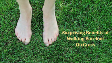 Photo of Surprising Benefits of Walking Barefoot On Grass in the Morning