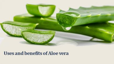 Photo of Aloe vera Benefits: How to use Aloe vera for Hair, Face and Weight loss