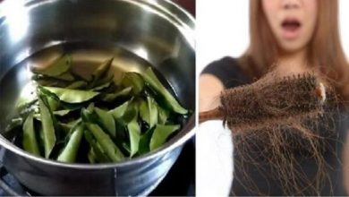 Photo of 10 Surprising Uses and Benefits of Curry Leaves You Must Know