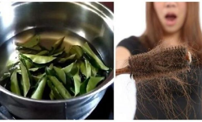 Uses and Benefits of Curry Leaves