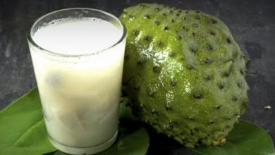 Photo of Soursop Benefits: Soursop can Cure Cancer, Diabetes, and other health Issues!