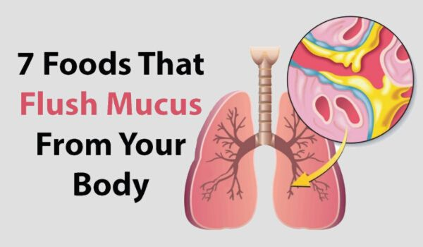 foods that help clear mucus