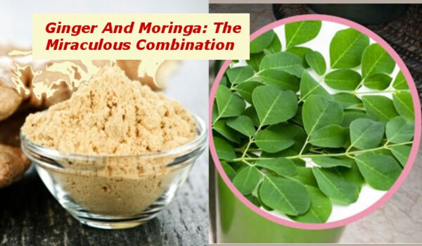 Ginger And Moringa: The Miraculous Combination That Fights The Deadliest Diseases!