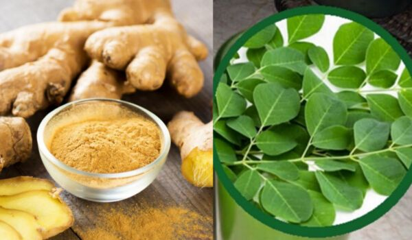 Photo of Ginger And Moringa: The Miraculous Combination That Fights The Deadliest Diseases!