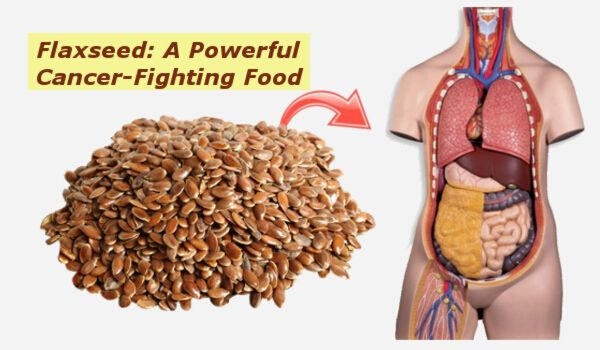 Photo of What Happens To Your Body When You Eat Flax Seeds Everyday