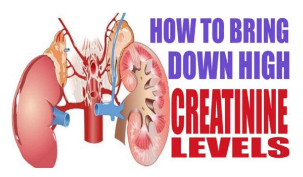 16 Easy Ways to Reduce Creatinine Level Fast and Improve Kidney Health