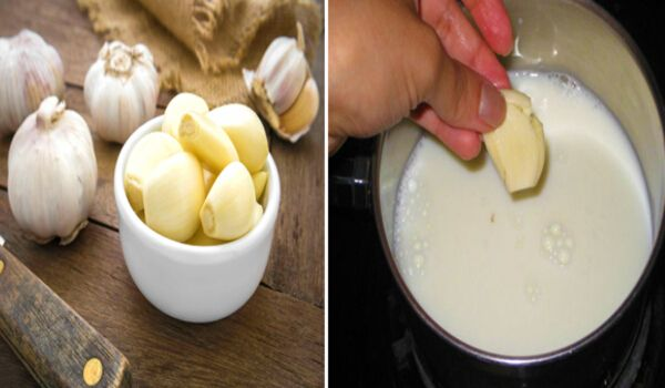 Drink Garlic Milk Everyday And Cure Health Problems You Never Heard Of!