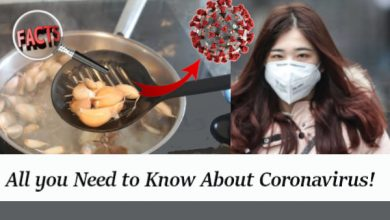 Photo of Garlic Cure Coronavirus: All you Need to Know About Coronavirus!