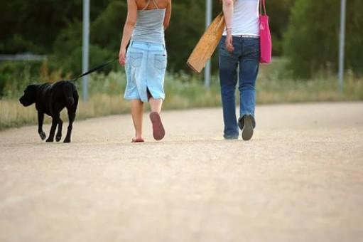 walking reduces high blood pressure