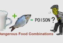Bad Food Combinations