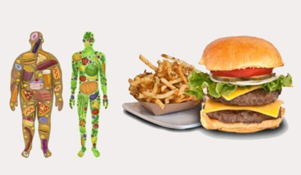 foods-1.jpeg