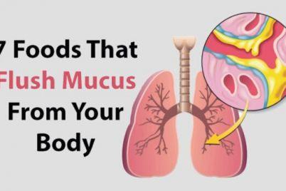 foods-mu-1.jpeg
